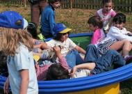 58-parchi-per-tutti-piacenza-nidondolo-giochi-bambini-disabili-giostra-piano-oscillante-allenamento-sport-leura